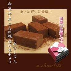 生チョコレート 5ピース