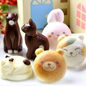 お絵かき 動物っこ ねこ チョコレート 合計6個セット お家のギフト箱入