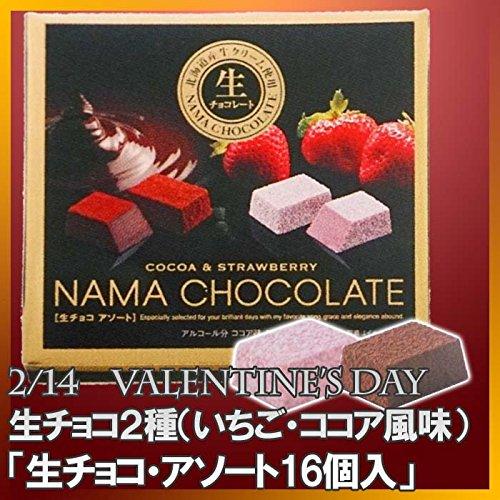 生チョコ ココア・いちご 2種セット 生チョコアソート・2種×8個入