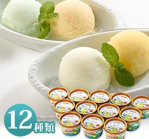 瀬戸田の柑橘職人が育てたシトラスを使用!12種類の味が楽しめるイタリアンジェラート